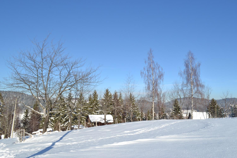 Zima na Zlataru