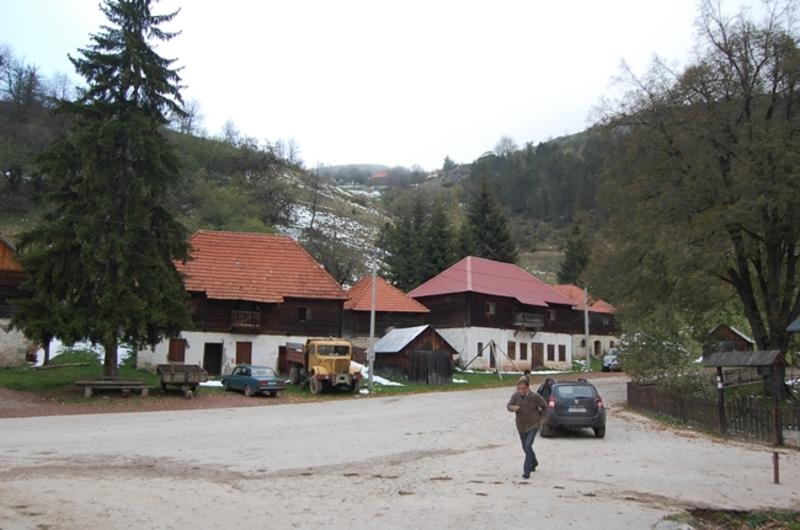 Штитково (фото: Г. Оташевић)