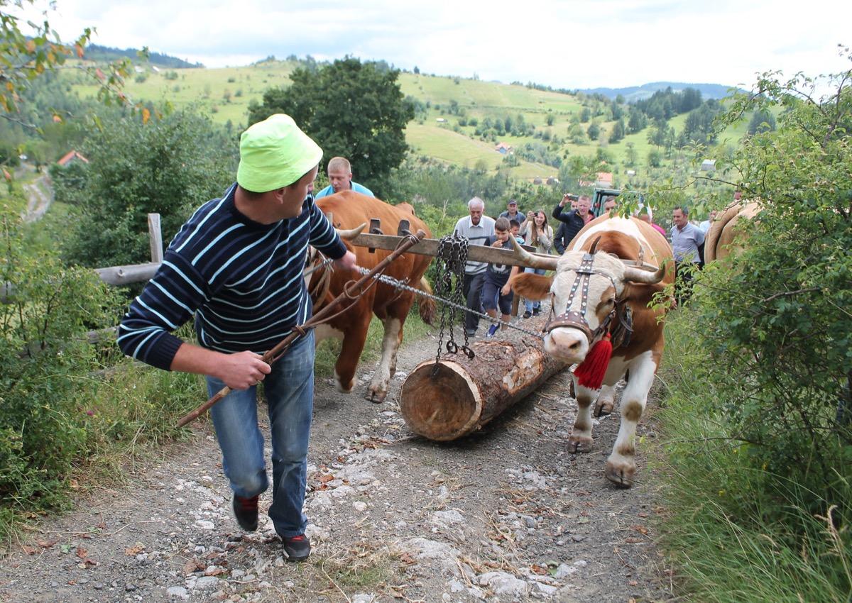 Видовдански сабор у Негбини Drugo mesto osvojio je Slobodan Lecic.