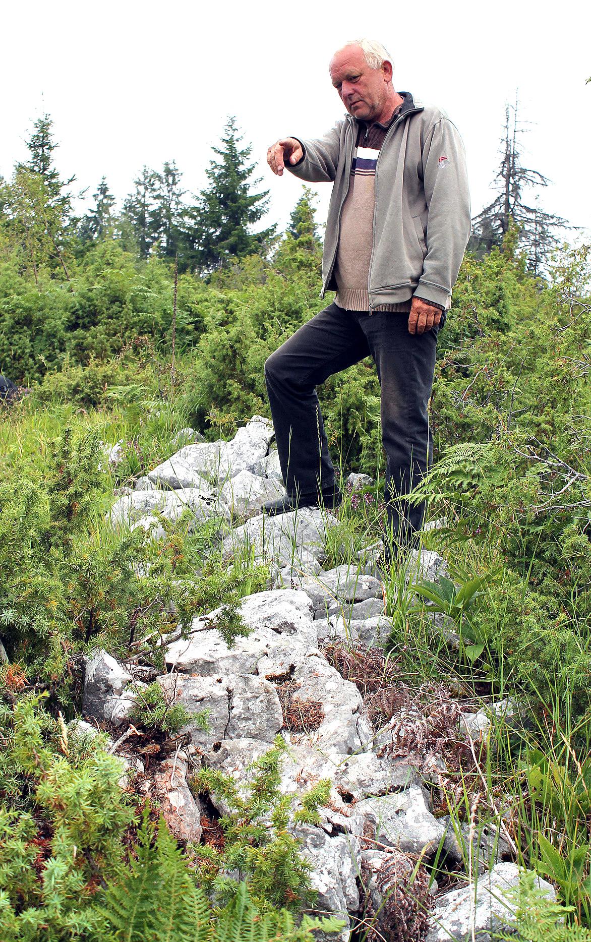 Остаци каменог зида на српско-турској граници