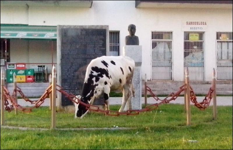 Запуштени споменик у сеоском центру Божетићи (foto: novosti.rs)
